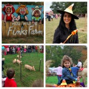 pumpkin picking, long island, fink's farm, fall, family travel, eastern long island