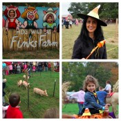 Globetrotting Mommy - Pumpkin Picking on Long Island