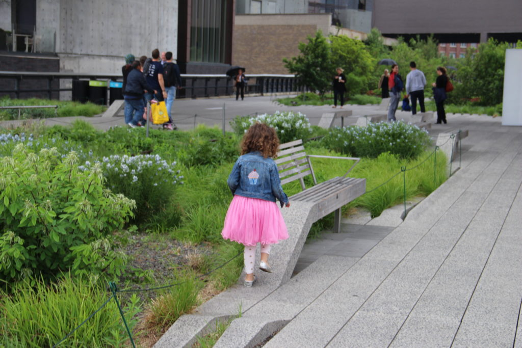 5 Awesome Things to do in NYC with Kids. The Highline, NYC. Family Travel, NYC With kids